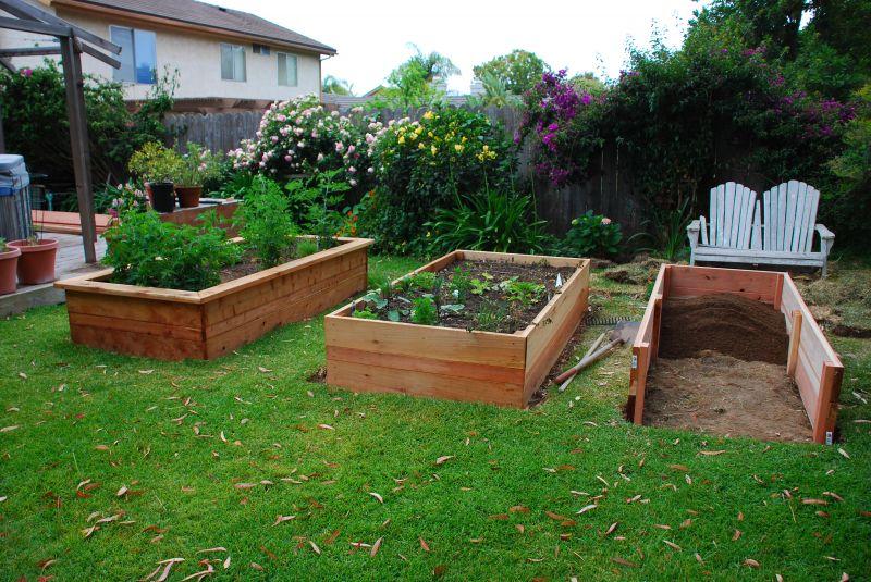 Building Vegetable Boxes for a Greek Garden California