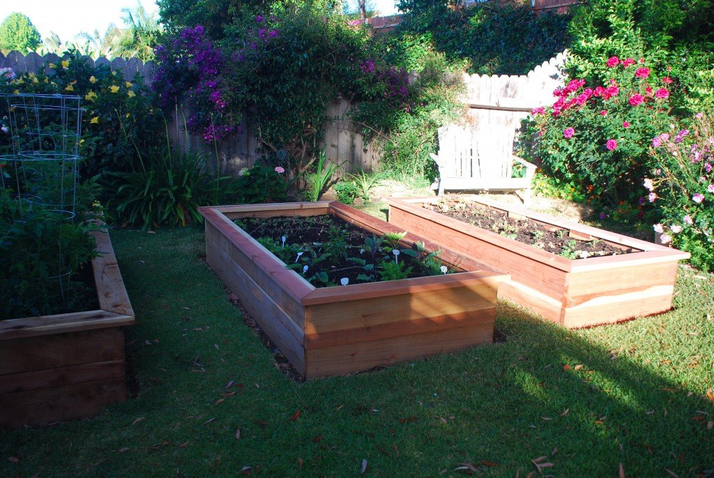 Building vegetable boxes for a greek garden california for Garden box vegetable layout
