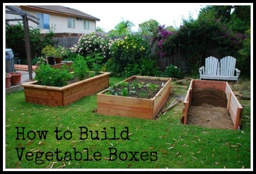 Building Vegetable Boxes for a Greek Garden California Greek
