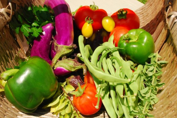 Post image for My Greek Summer Vegetable Garden