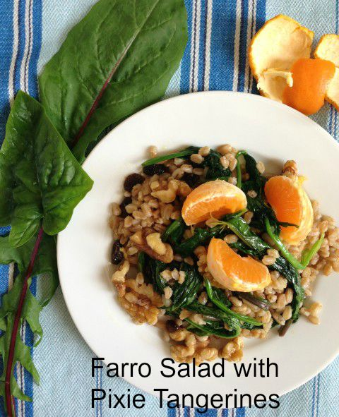Post image for Farro Salad with Pixie Tangerines and Walnuts
