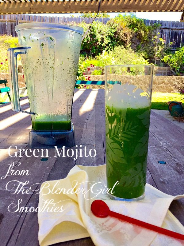 Post image for The Blender Girl Smoothies by Tess Masters – My Drink Bible