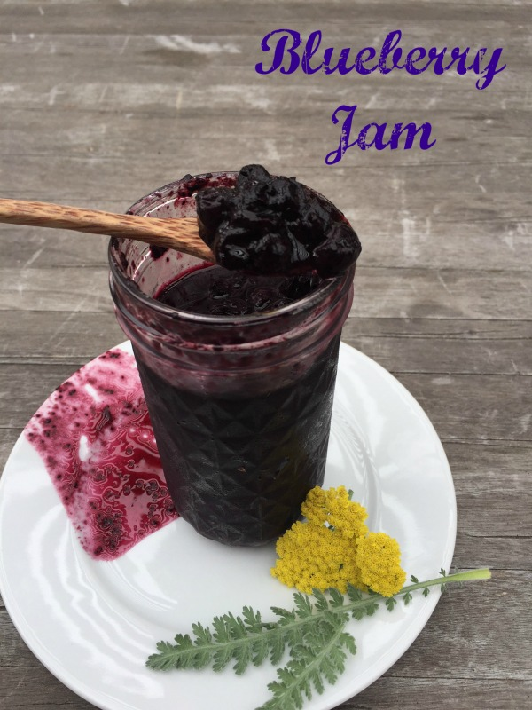Post image for Blueberry Red Apple Vinegar Jam
