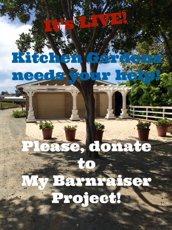 Post image for My Barnraiser Campaign for The Kitchen Gardens is LIVE!
