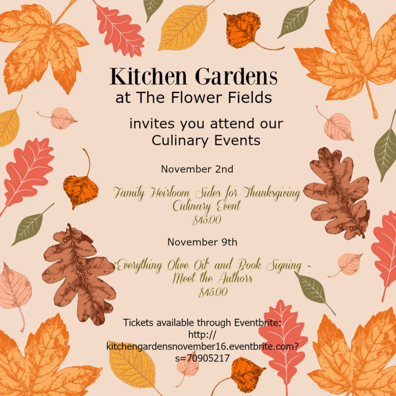 Post image for Kitchen Gardens November Events ~  Registration Open!