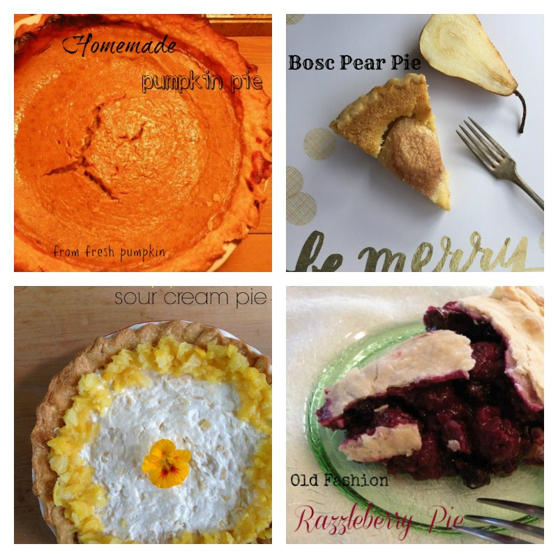Post image for Thanksgiving Pies from California Greek Girl